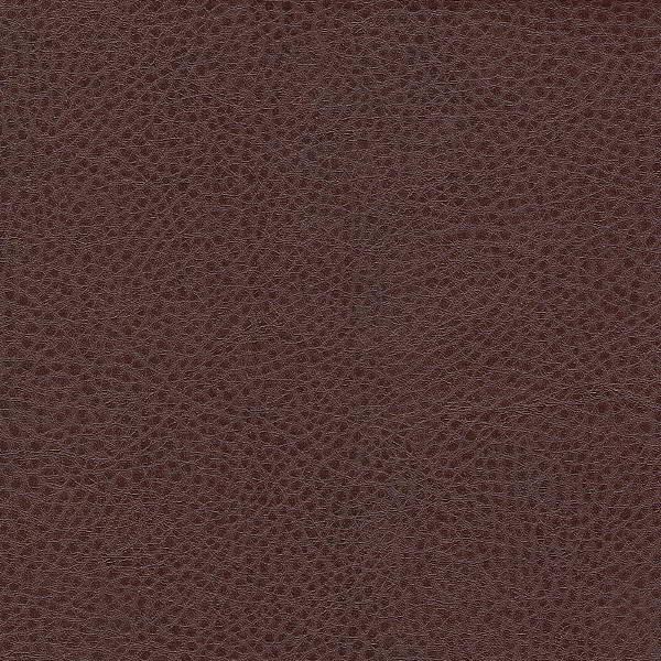 sontex brown